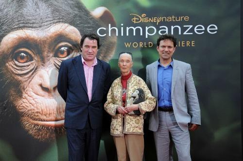 Jane-Goodall-Chimpanzee-premiere