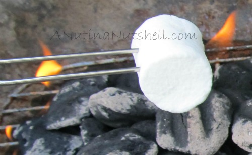 roasting-marshmallows
