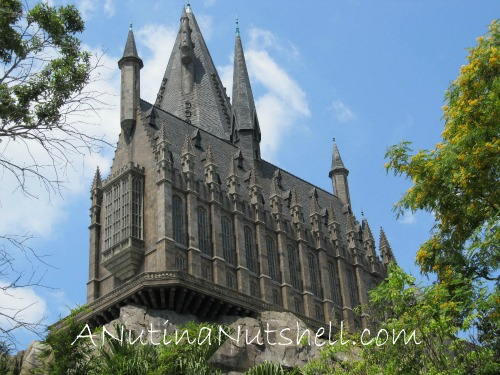 Hogwarts-Castle-Universal-Studios-Florida