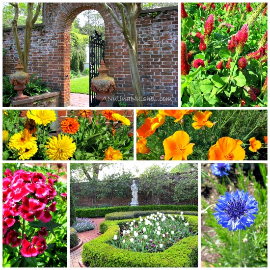 Tryon_Palace_Gardens_collage