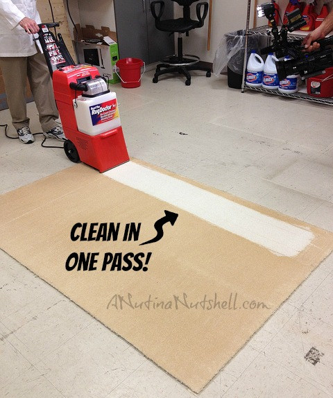 Rug Doctor Carpet Cleaning Demo