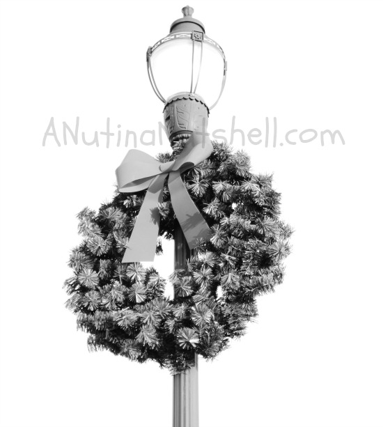 Light-pole-wreath-dynamic-monochrome-creative-filter-Panasonic-Lumix-G5