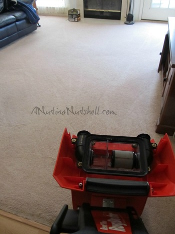 Rug-Doctor-clean-carpet