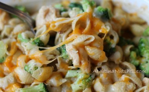 creamy chicken broccoli pasta casserole recipe