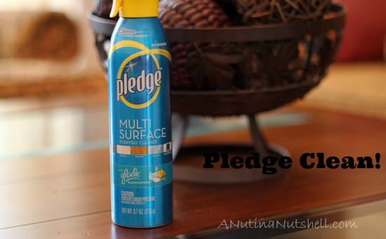 Pledge multi surface dust and clean