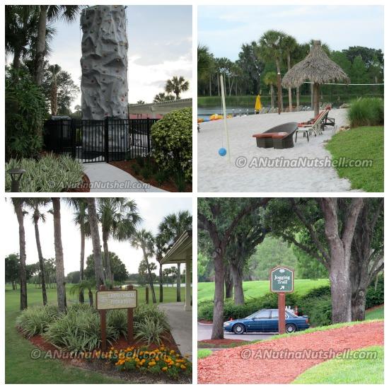 Hyatt Regency Grand Cypress Orlando activities