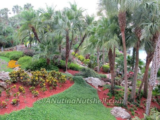 Hyatt Regency Grand Cypress Orlando palm trees