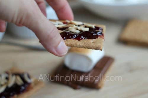 chocolate raspberry s'mores with almonds