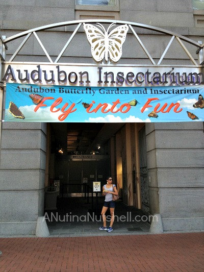 New Orleans Audubon Insectarium
