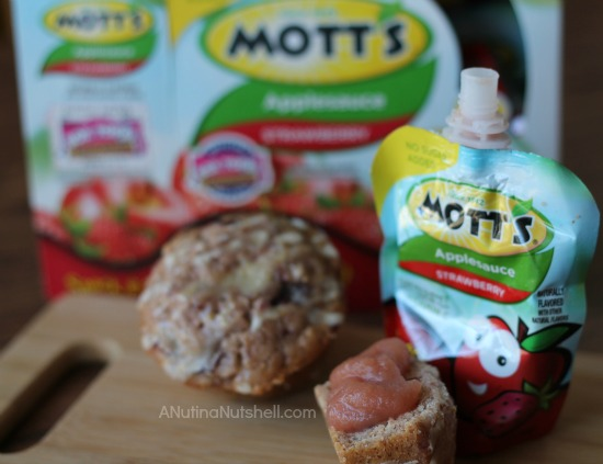 Mott's Snack & Go snack idea - 2