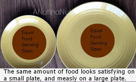 serving size - small plate vs large plate