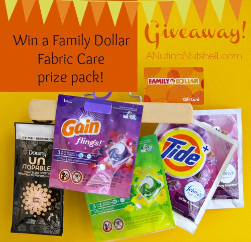 Family Dollar Fabric Care Prize pack
