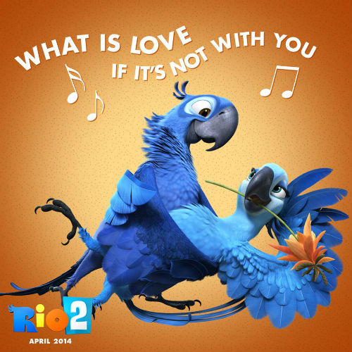 Rio 2 What Is Love If It's Not With You