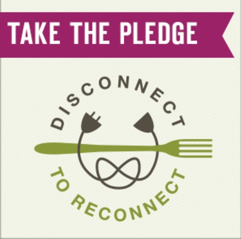 Disconnect 2 Reconnect pledge