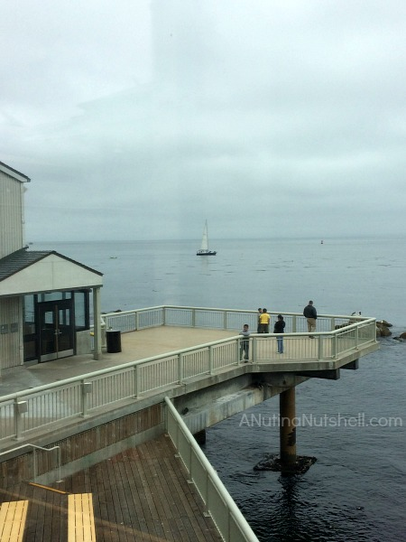 Monterey Bay Aquarium - Pacific Ocean Shoreline