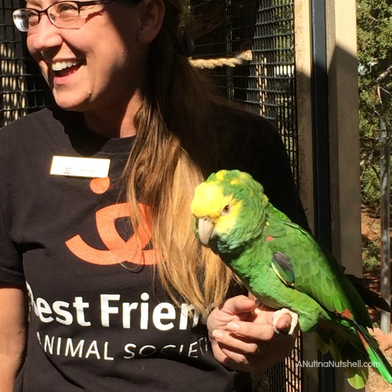 Best Friends Animal Sanctuary - Parrot Garden