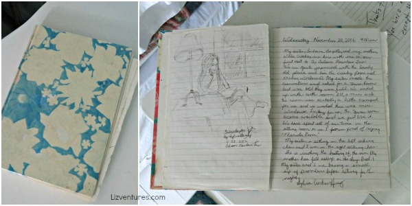Balsam Mountain Inn - guest room journals